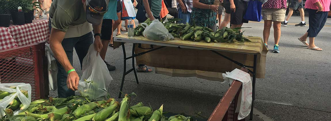 DTFM Produce Pick sweet corn