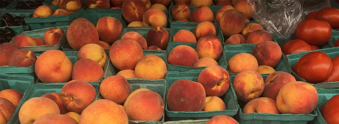 Peaches at the DTFM