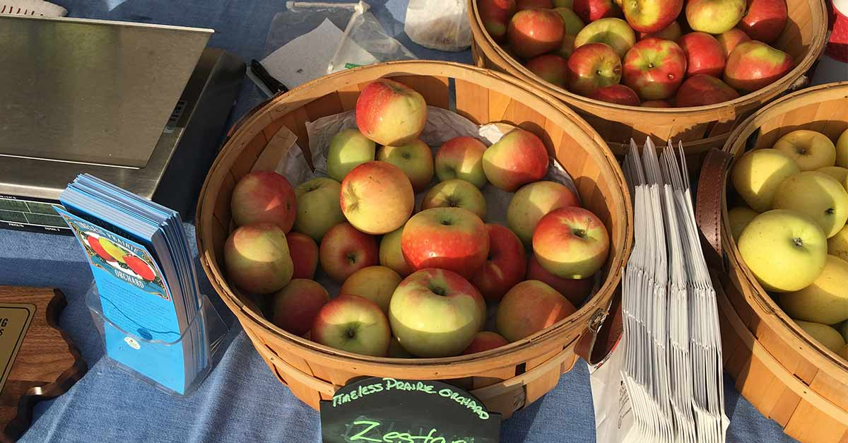 Timeless Prairie Orchard apples at the DTFM